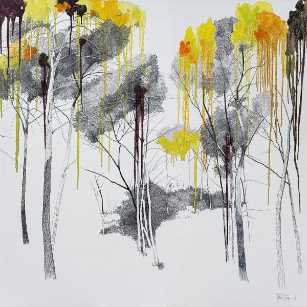 Bosc i més bosc II