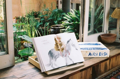 Libros y catálogos