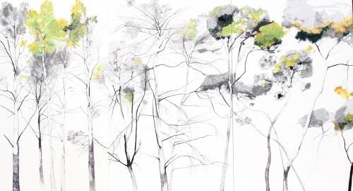 Tatiana Blanqué. Rhapsody for a forest